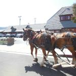 Solvang Trolley & Carriage Foto