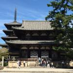 Horyu-ji Temple Photo