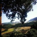 صورة فوتوغرافية لـ Casale Villa Raino