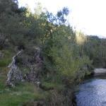 Rio Noguera