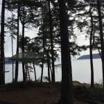 Photo de Doe Bay Resort and Retreat