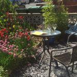 Front garden at the Rialto