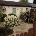 Ashton Cottages nr Cheddar Somerset
