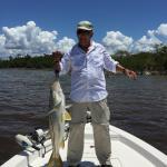Nice Everglades Snook