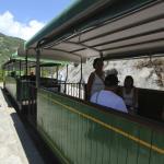 tourist train stops at pobla de lillet