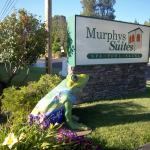 Murphys Suites Foto