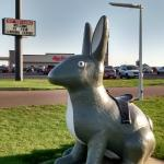 Marlin's in background of rabbit statue you can sit on next door