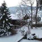 Hotel Restaurant Alpina Grindelwald Foto