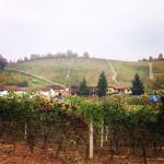 Photo of Il Milin - Agriturismo Azienda Agricola Fratelli Rovero