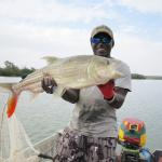 Fishing for tigerfish in the Gambia...