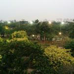 view dari salah satu jendela kamar