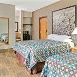 Pet Friendly Room 2 Queen Beds