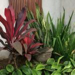 Anini Raka Resort & Spa Foto