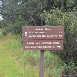 Pu'u Huluhulu trail Foto