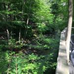 Mill Stream in Woodstock at the Inn