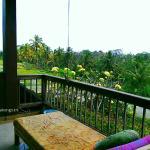 View from Di Atas Balcony