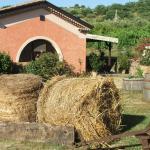 Agriturismo I Moresani