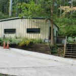 The Big Dawg's House Cabin
