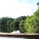 Frenchman's Forest Natural Area 9-19-15