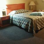 Bed/Worn Carpet