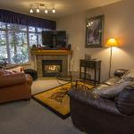 Cozy living rooms with gas fireplace