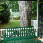 Porch swing on pleasant porch/ancient maple tree
