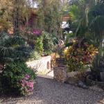 Villa Seirama Alam Foto