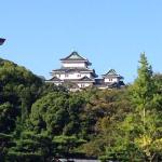 Sun Hotel Wakayama resmi