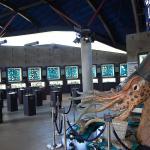 Shellfish Museum of Rankoshi