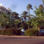 Вид с набережной на зелень отеля. Справа - не Мерхаба, а другой отель.