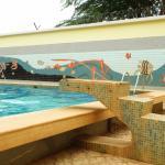 Terminus Hotel pool, Niamey