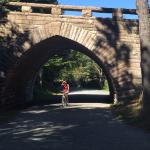 Lovely bridge on the Carriage Roads in Acadia