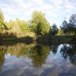Ambraden Pond