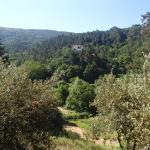 Views to Quinta dos Barbas