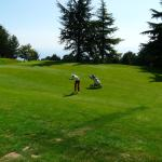 Many fairways are narrow and challenging