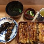 Liver, neck, large eel box set