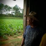 Tobaksplantagens ägare
