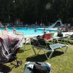 Foto de Otter Lake Camp Resort