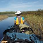 Canoeing amid the rice paddies