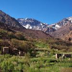 Morocco Tours Travel - Day Tours