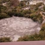mud and steam at Pohutu lookout balcony