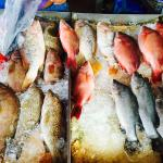 Fresh caught seafood daily