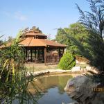 Один из уголков японского садика в Холоне