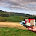 Cheescake and a view