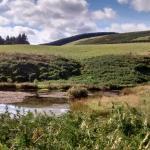 Farmland setting