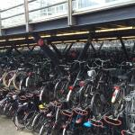 Parking de Bicis en la Estación