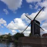 Vista de un molino desde el canal