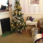 Christmas tree in Southwold Room such a nice touch
