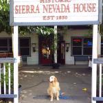 Dog friendly Sierra Nevada House