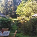 zonnige tuin met vriendelijk watertje